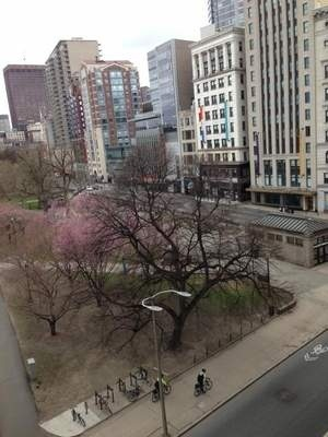 The view from Sara Graybill's dorm room at 9:30 a.m. on the Emerson College campus in downtown Boston. Courtesy photo
